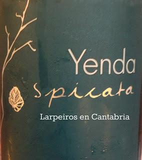 Vino Blanco Yenda Spicata 2012: Serio, bueno, sorprendente