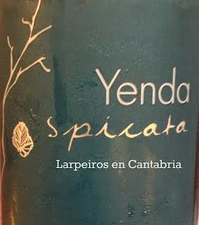 Vino Blanco Yenda Spicata 2013: Va a ser la bomba