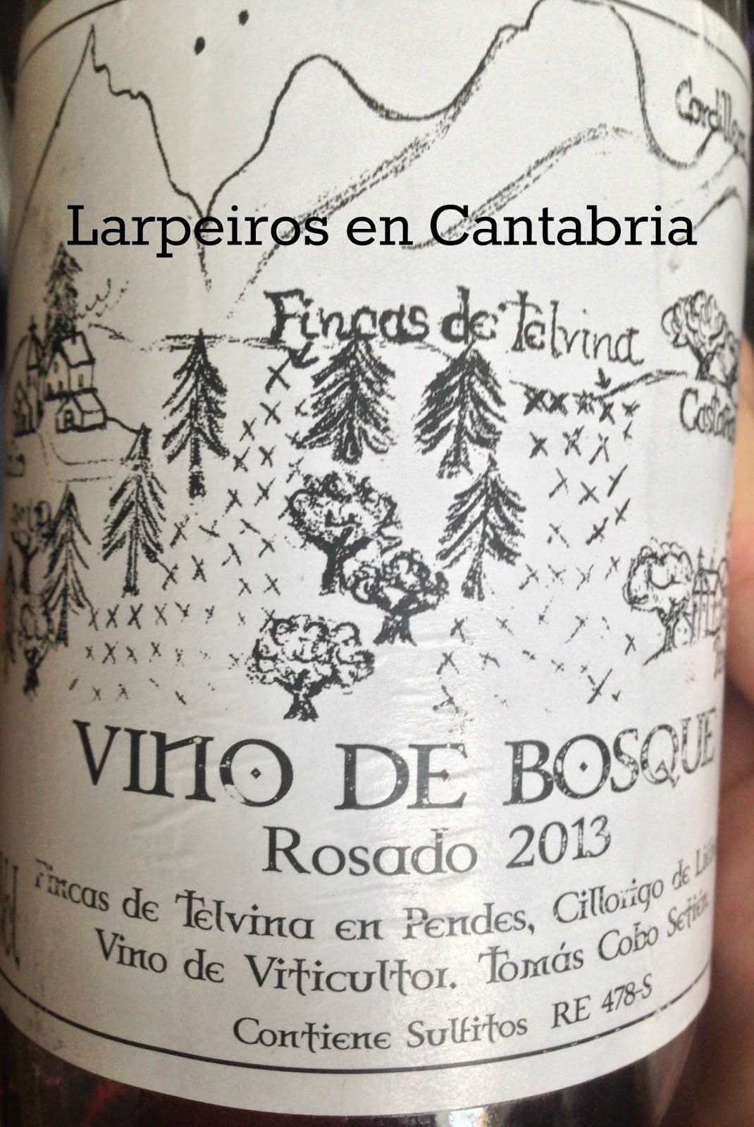Rosado Vino de Bosque 2013: El primer Rosado de Cantabria