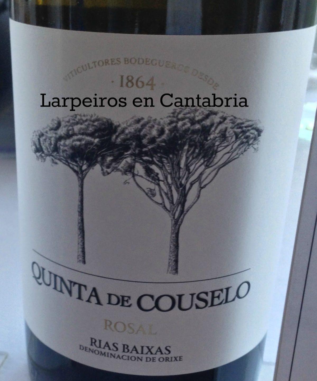 Vino Blanco Quinta de Couselo 2013: Un amigo más a la vista