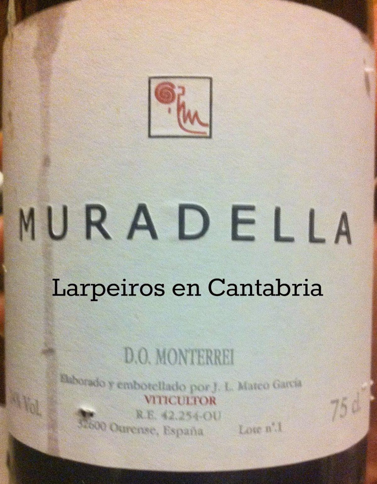 Vino Tinto Muradella 2008: Esperaba más de este Monterrey