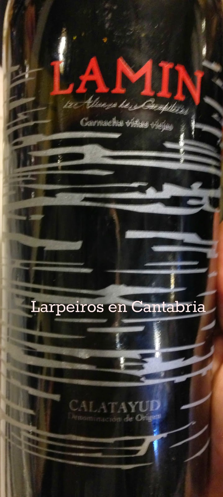 Vino Tinto Lamin 2009: Alianza de Garapiteros