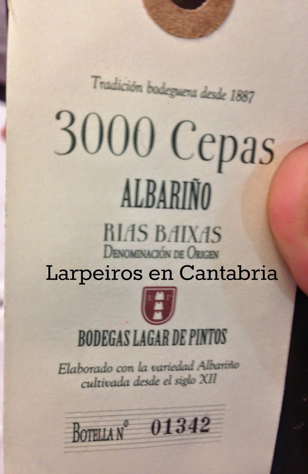 Vino Blanco 300 Cepas 2011: Para comprar unas cuantas botellas