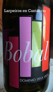 Vino Tinto Bobal Dominio de la Vega 2010: Interesante