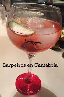 Gin Tonic de Ish con Schwepps Hibiscus: Mi nueva Pasión
