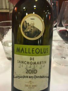 Malleolus sanchomartin