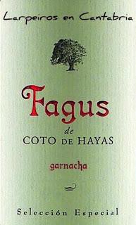 Tinto Fagus Coto de Hayas en Campo de Borja