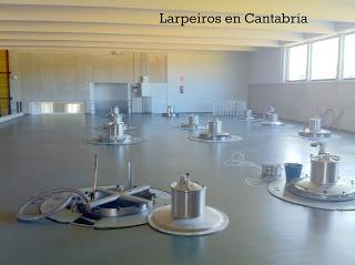 Bodega Losada, en el Bierzo, visita aséptica