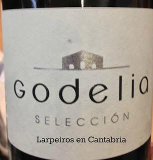 Vino Blanco Godelia Selección 2010: Este Godello es pura finura
