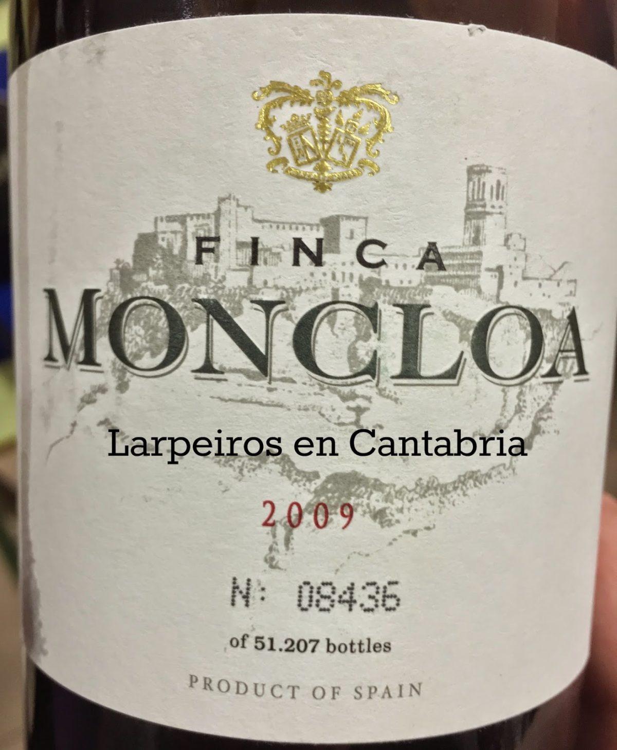 Vino Tinto Finca Moncla 2009: Agradable Sorpresa