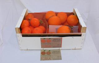 Naranja Valencia Turia: Espectaculares