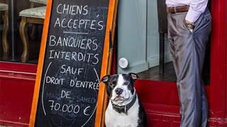 Prohibida la entrada a banqueros. Los perros son bienvenidos