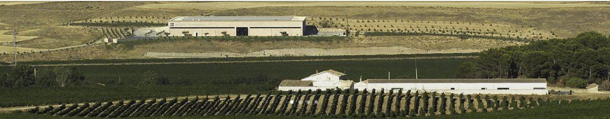 Vino Tinto Altos de Inurrieta Reserva 2014