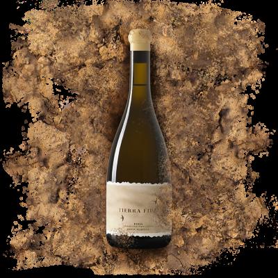 Tierra Vino blanco La Rioja